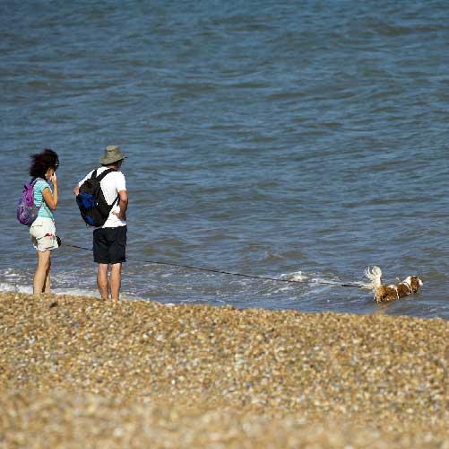 people walking on dunwich beach