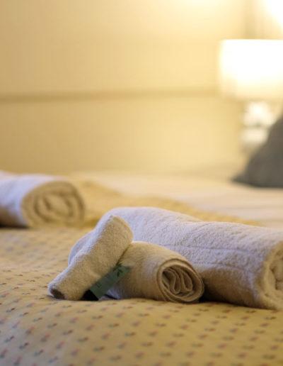 horse-shoe-towels-2